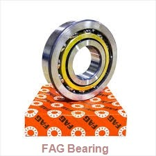 FAG 713613100 wheel bearings