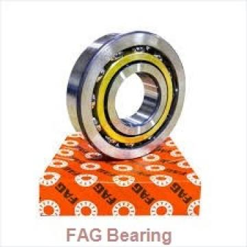 FAG 23232-E1A-K-M + H2332 spherical roller bearings