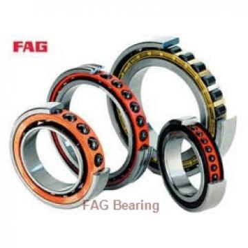 FAG S6302 deep groove ball bearings