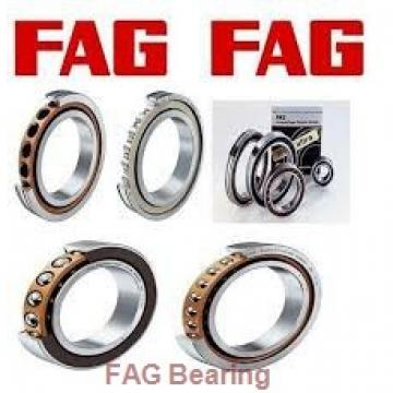 FAG 22207-E1 spherical roller bearings