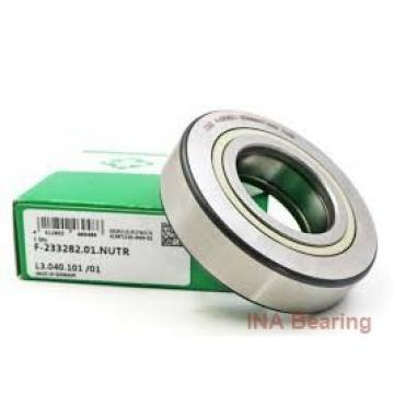 INA ZKLDF100 angular contact ball bearings
